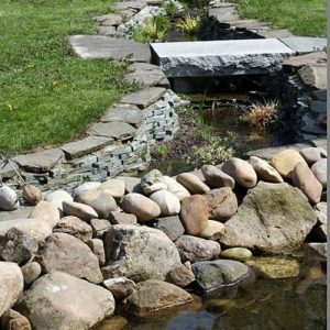 Gartenbau Titelbild Gärtnerei Lukassen Breuker Dorsten